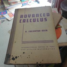 ADVANCED CALCULUS高等微积分