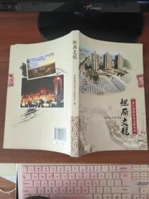 靓丽文龙 (綦江街镇历史文化丛书)