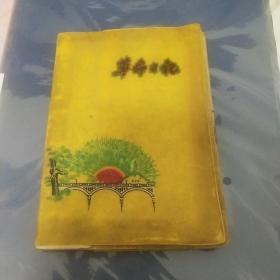 革命日记黄色封面