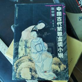 中国古代禁毁言情小说:型世言