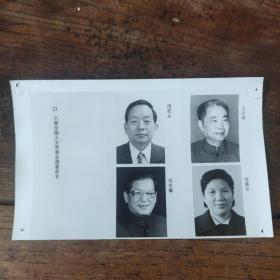 1993年,新当选的八届人大副委员长:田纪云、倪志福、王汉斌、陈慕华