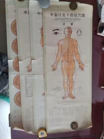 中国针灸十四经穴图,正面、侧面、背面、子午流注针法按时开穴全图(全套4张)