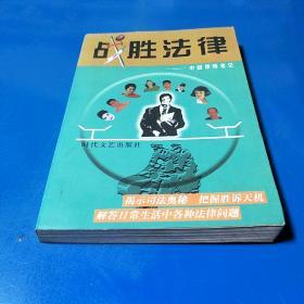 战胜法律:中国律师笔记