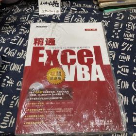 精通Excel VBA(视频精讲版)有盘