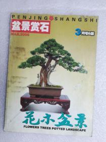 花木盆景2006.3.B(盆景赏石版)