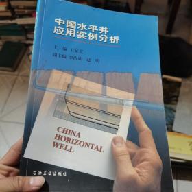 中国水平井应用实例分析