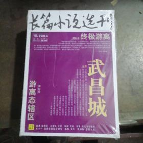 长篇小说选刊2011年第6期