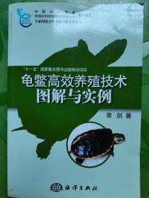 龟鳖高效养殖技术图解与实例
