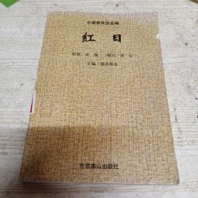 中华爱国主义文学名著文库 红日