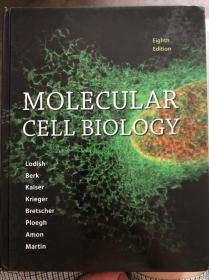 Molecular cell biology eighth edition 分子细胞生物学8版