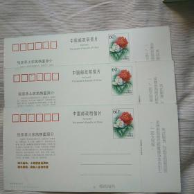 张家界土家风情园邮资门票(3枚,60分牡丹图明信片)