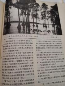 少年文艺杂志,有韩寒夕阳依旧美丽,夏有志,彭学军,徐岩,