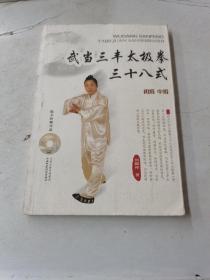 武当三丰太极拳三十八式(初级 中级)