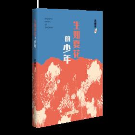 生如夏花的少年❤ 洪湖浪 百花洲文艺出版社9787550042865✔正版全新图书籍Book❤