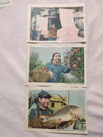 三张小画片