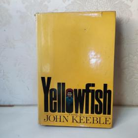 YELLOWFISH  John keeble 英文原版 精装
