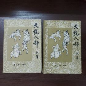天龙八部 第二卷(上下册)