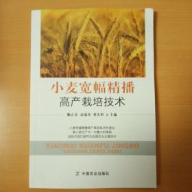 小麦宽幅精播高产栽培技术
