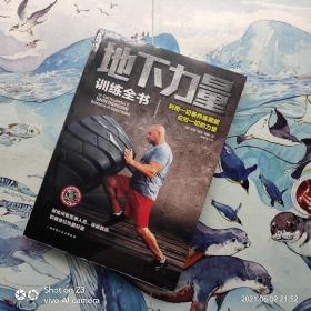 地下力量训练全书:体重体操器械训练技巧书籍