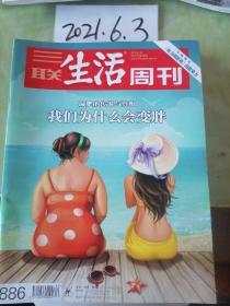 三联生活周刊  2016年20期
