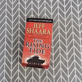 The Rising Tide 驾驭浪潮