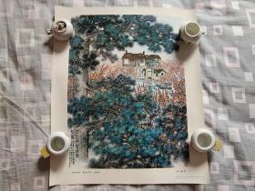劲松挺翠 梅园长春(中国画)1977