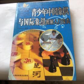 青少年中国象棋与国际象棋图解入门宝典