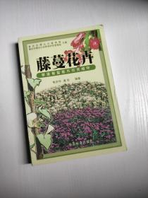 藤蔓花卉 熊济华、唐岱  著 中国林业出版社