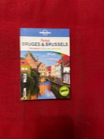 孤独星球布鲁塞尔旅游指南英文原版Lonely Planet Bruges Brussels