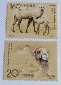 1993-3 野骆驼邮票
