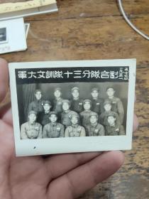1951年军大文训队十三分队合影照片