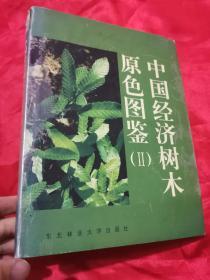 中国经济树木原色图鉴(Ⅱ)   大16开,精装