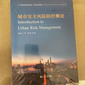 城市安全风险防控概论