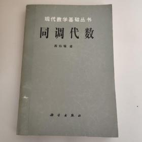 现代数学基础丛书:同调代数