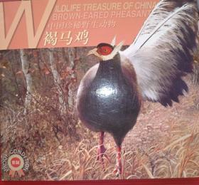 中国珍稀野生动物-褐马鸡 流通纪念币 如图所示 特殊商品售出后不退不换
