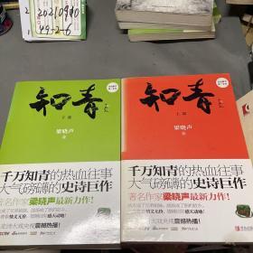 知青(上下部)2册全