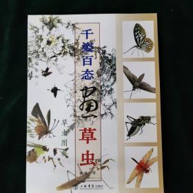 国画训练新编系列:千姿百态画草虫