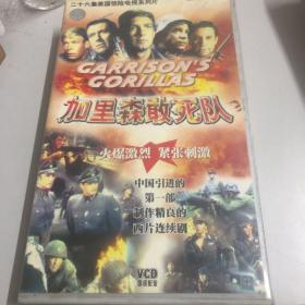26集美国惊险电视系列片《加里森敢死队》VCD26碟装