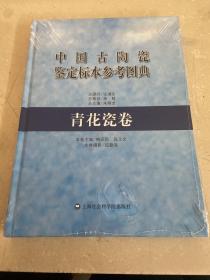 中国古陶瓷鉴定标本参考图典:青花瓷卷