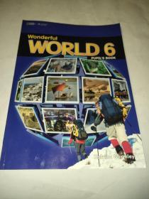 Wonderful WORLD 6 无盘