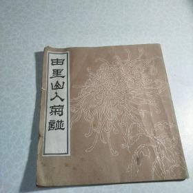 由里山人菊谱(1985年荣宝斋版本)