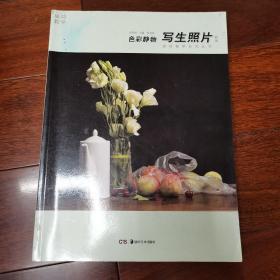 成功教学系列丛书 美术高考解决方案:写生照片 色彩静物