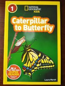 National Geographic Readers: Caterpillar to Butterfly美国《国家地理》杂志-儿童科普分级阅读,第1级:从毛毛虫到蝴蝶 英文原版 【正版全新】