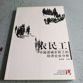 农民工中国进城农民工的经济社会分析