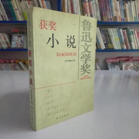 鲁迅文学奖获奖小说