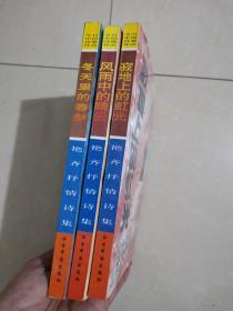 艳齐抒情诗集:《寂地上的红光》《冬天里的春梦》《风雨中的晴云》全套三册