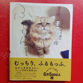 (日文原版)しょんぼり颜のモフモフ猫