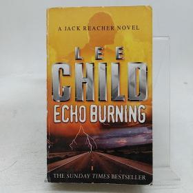 Echo Burning (Jack Reacher 05)