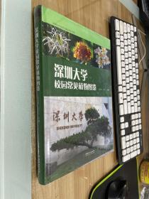 深圳大学校园常见植物图鉴(精)