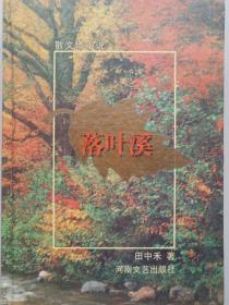 落叶溪:散文体小说
